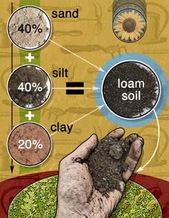 654_soil-ver-FINAL-1
