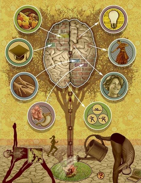 811_Brain-lowres-2a