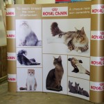 Royal-Canin---05_1