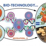 geneticsdna-tomatofinal