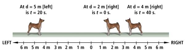 668_9-21_f_dog-TM-3